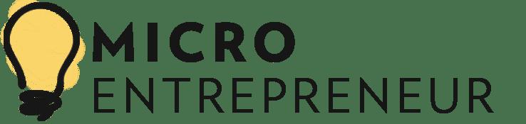 Micro Entrepreneur